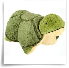 Buy My Tardy Turtle